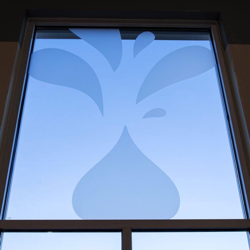 WindowDetail