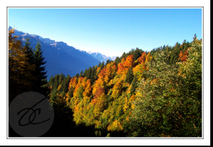 Autumninthealps